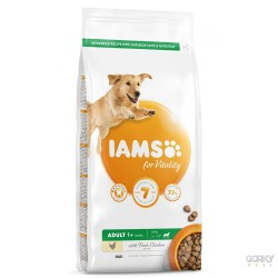 IAMS Dog Adult - Large