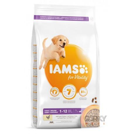 IAMS Dog Puppy - Large