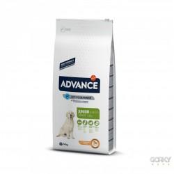 ADVANCE Dog Maxi Junior - Frango & Arroz
